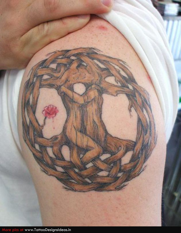 Amazing Tree Of Life Tattoo On Shoulder