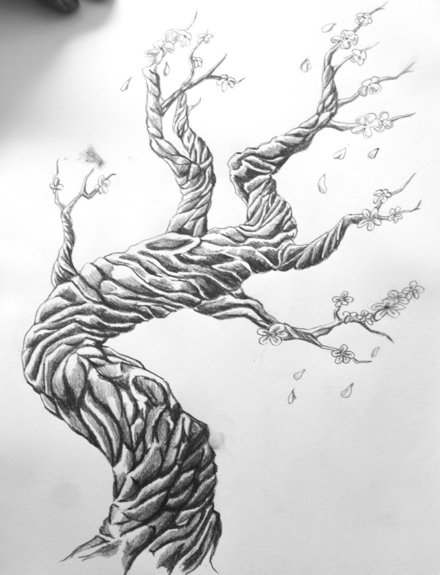 Oak Tree Tattoo Designs Wwwgalleryhipcom The Hippest