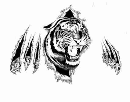 Angry Ripped Skin Tiger Tattoo Design