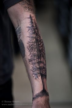 Awesome Forest Tree Tattoos On Lower Arm