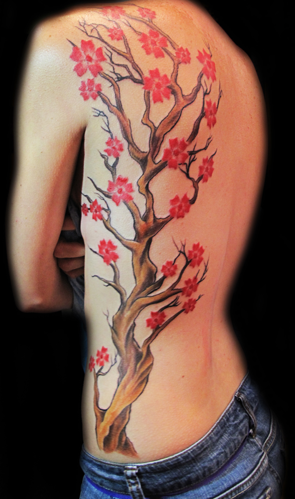 Cherry Blossom Tree On Side Back