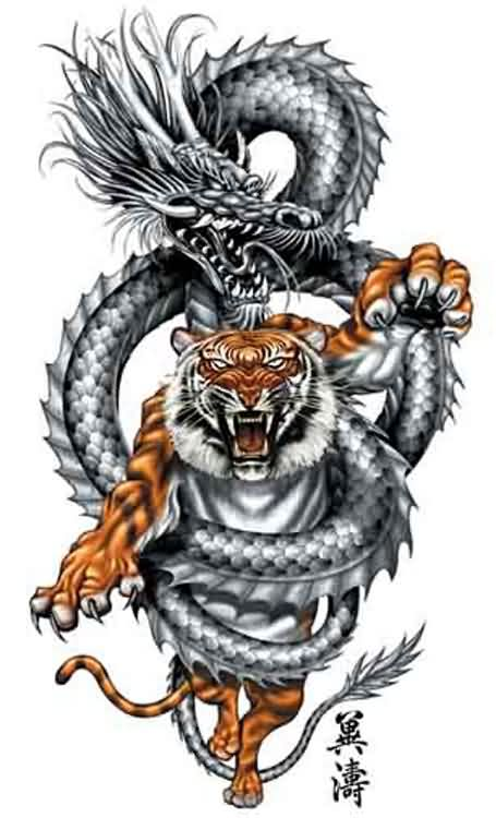 Dragon Wrap Angry Tiger Tattoo Design