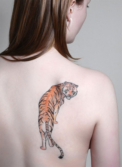 Nice Tiger Tattoo On Back Shoulder Of Girl