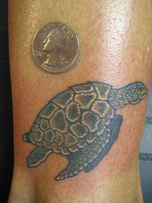 Normal Sea Turtle Tattoo And A Golden Coin