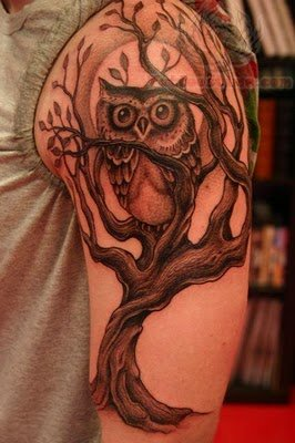 Owl Sitting On Tree Tattoo On Half Sleeve
