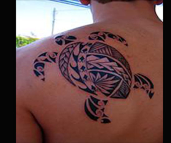 Polynesian Tribal Turtle Tattoo On Back Shoulder