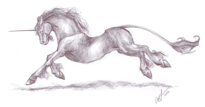 Running Unicorn Tattoo Sketch