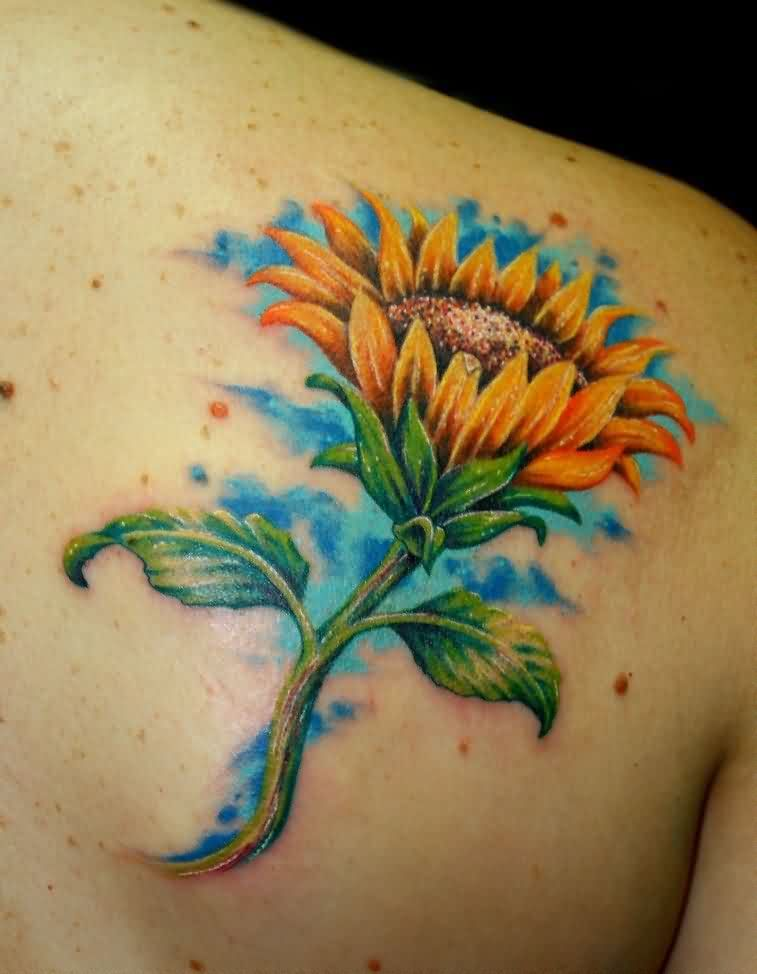 Sunflower With Green Leaves Tattoos On Back Shoulder