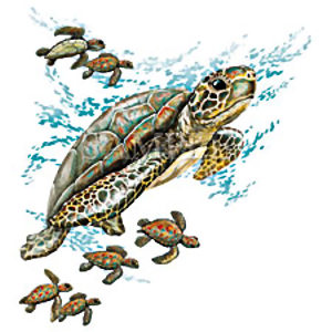 Swimming Turtle Tattoo Designs