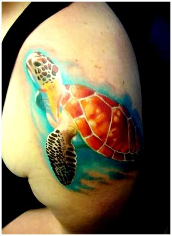 The 3D Turtle Tattoo On Biceps