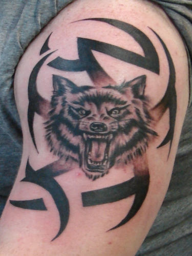 Tribal Angry Wolf Tattoos On Biceps