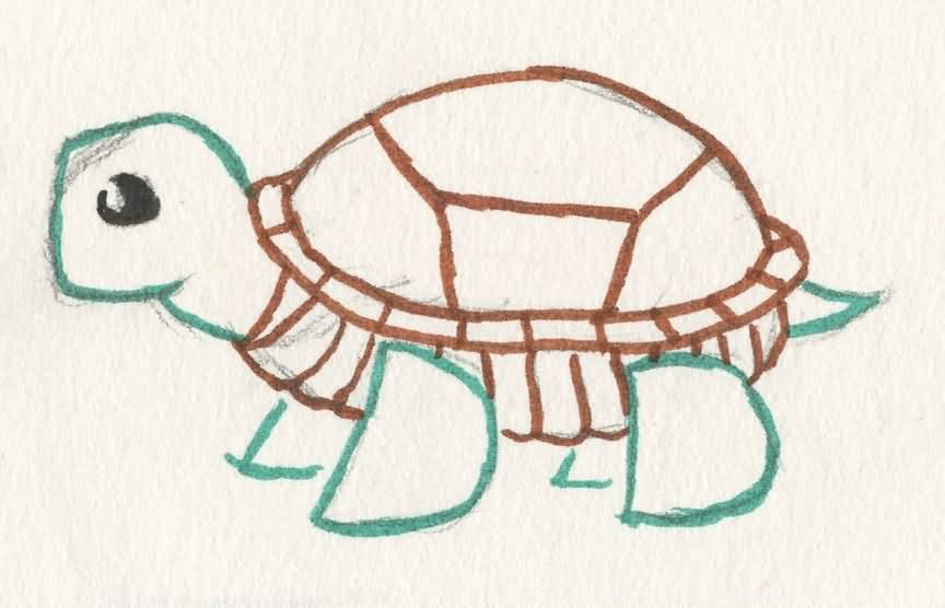 turtle tattoo sketch for kids - Sketch For Kids