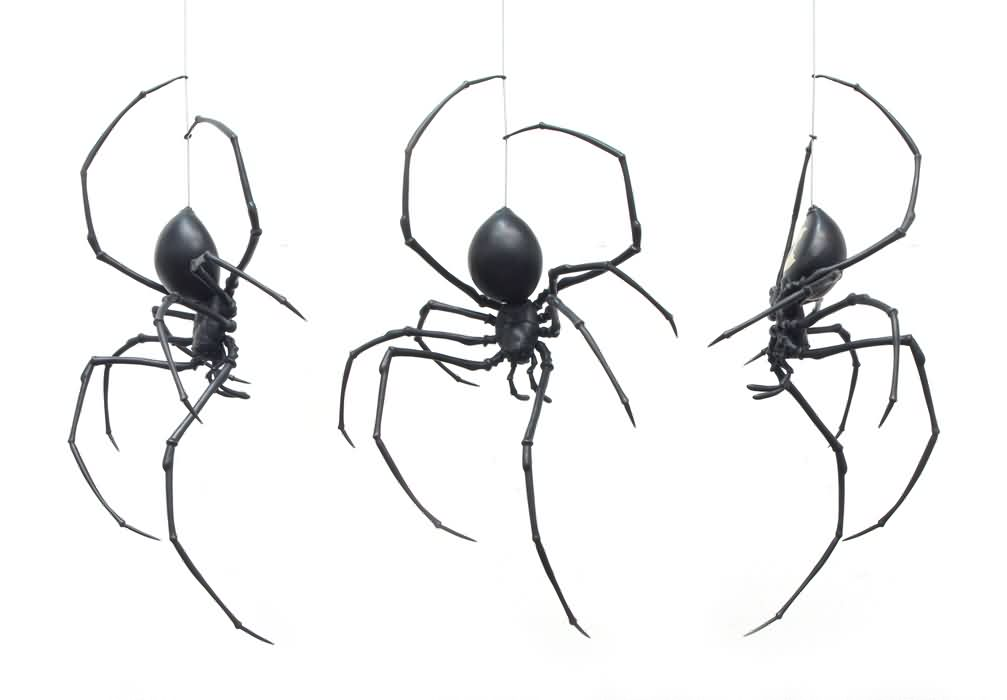 3 Black Spider Tattoo Designs