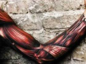 3D Muscle Tissue Sleeve Tattoos