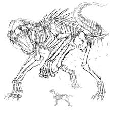 Animal Skeleton Tattoo Sketch