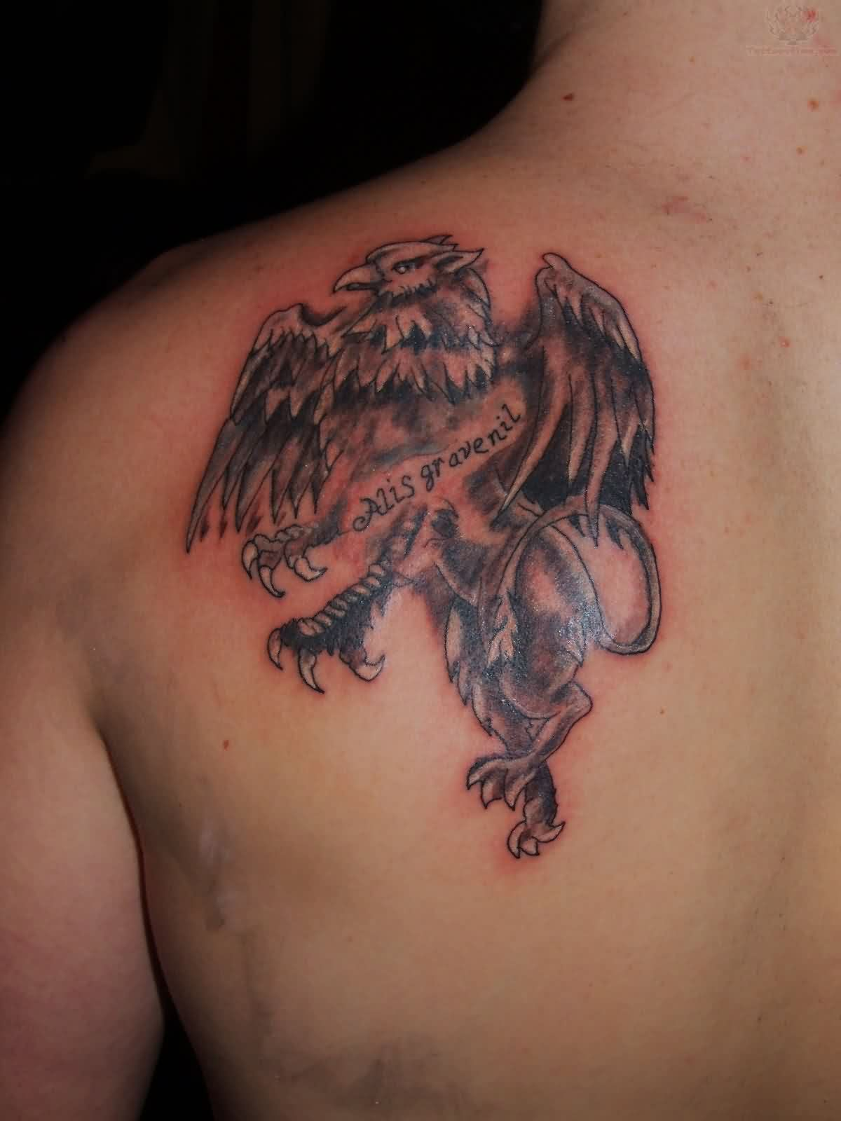 Back Shoulder Tattoo Of Griffin