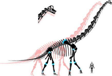 Big Dinosaur Skeleton Tattoo Design