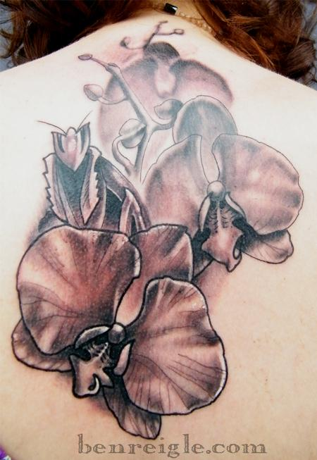 Black And Grey Orchid And Mantis Tattoos On Upperback