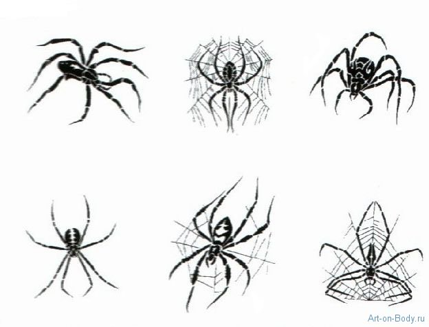 Black Spider And Web Tattoo Designs