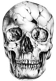 Cracked Skull Tattoo Stencil