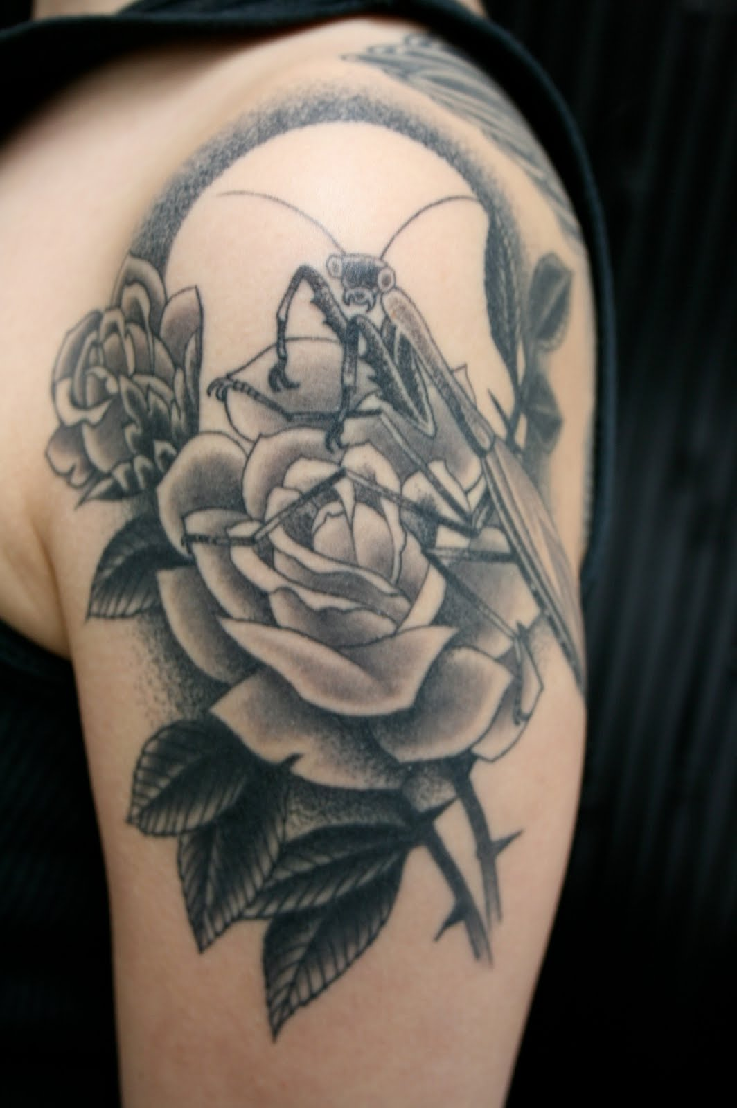 Full Moon And Bee On Rose Tattoos On Arm