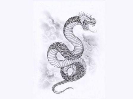 Japanese Snake And Clouds Tattoo Sketch