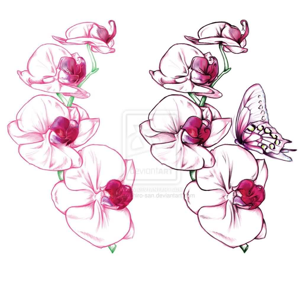 Latest Orchid And Butterfly Tattoo Design