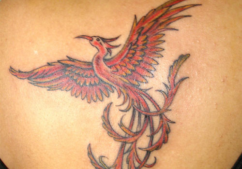 A Very Lovely Phoenix Tattoo