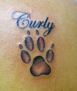 Amazing Name And Grey Paw Print Tattoos