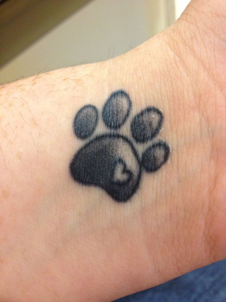 Amazing Paw Print Tattoo On Inner Wrist