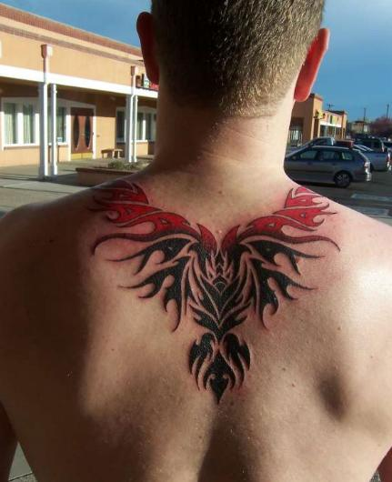 Best Phonenix Tribal Tattoo On Upperback