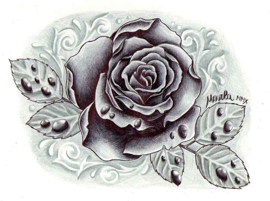 Black And Grey Rose With Drops Tattoo Design