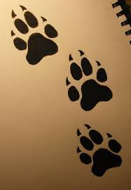 Black Paw Print Tattoos Flash