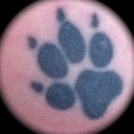 Black Paw Tattoo Image
