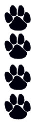 Black Paws Temporary Tattoo Sample