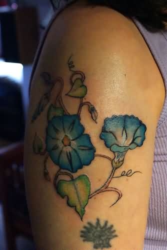 Blue Morning Glory Flower Tattoos On Arm