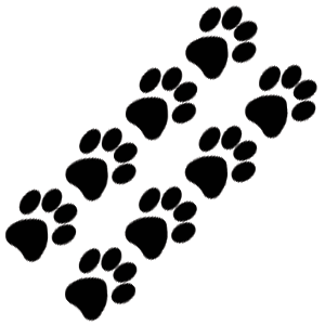 Cat Paw Prints Tattoos Sample