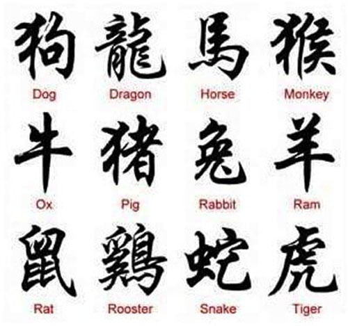 Chinese Animal Name Symbol Tattoo Designs