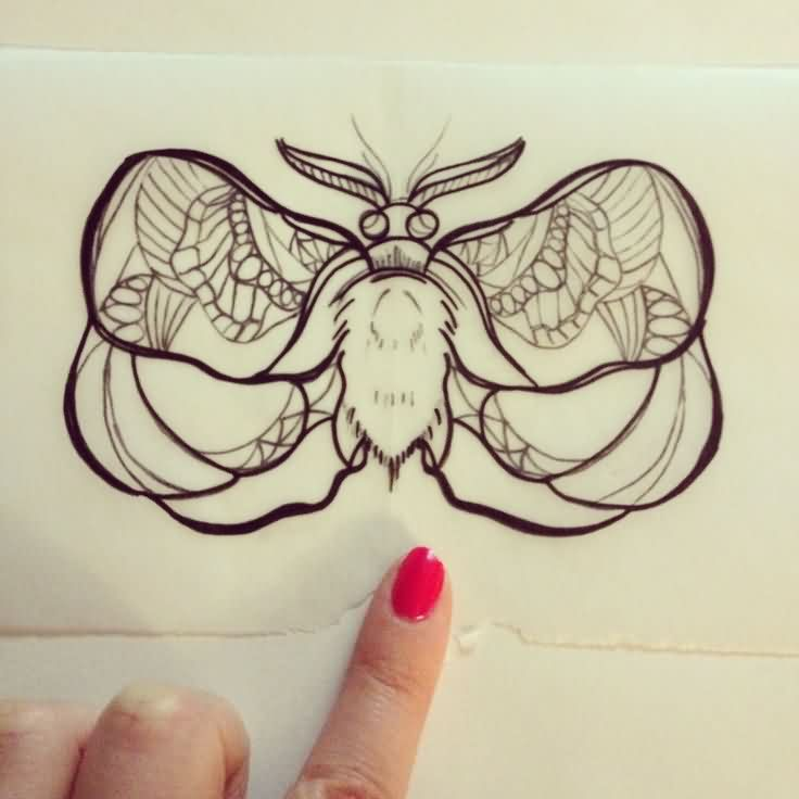 Design Of Moth Tattoo