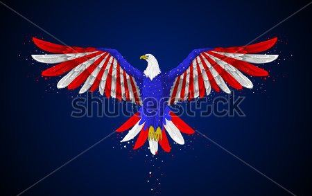 Eagle With American Flag Tattoo Photo