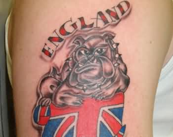 England Bulldog Tattoo On Arm