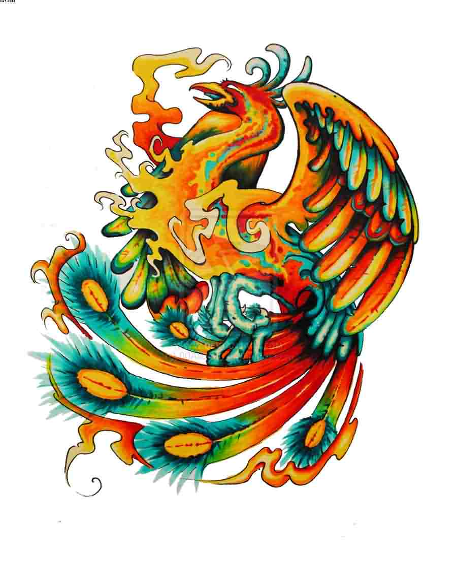 Flames And Colorful Phoenix Tattoo Designs