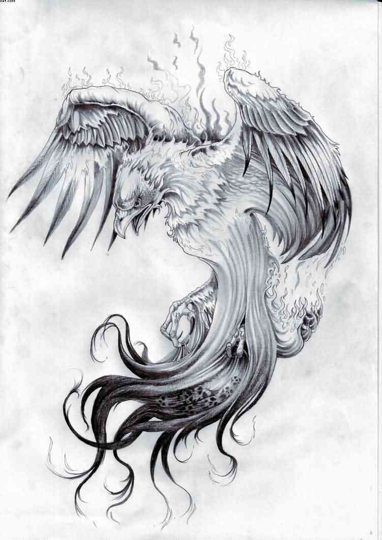 Flames Phoenix Tattoo Design