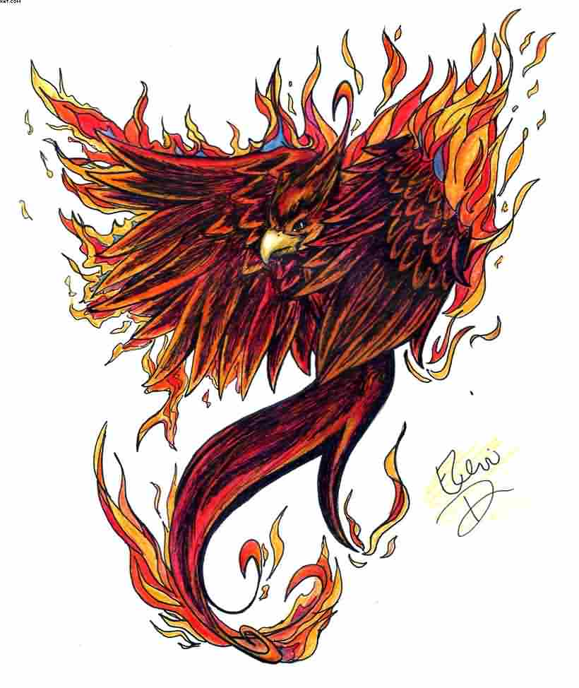 Flaming Phoenix Tattoo Design