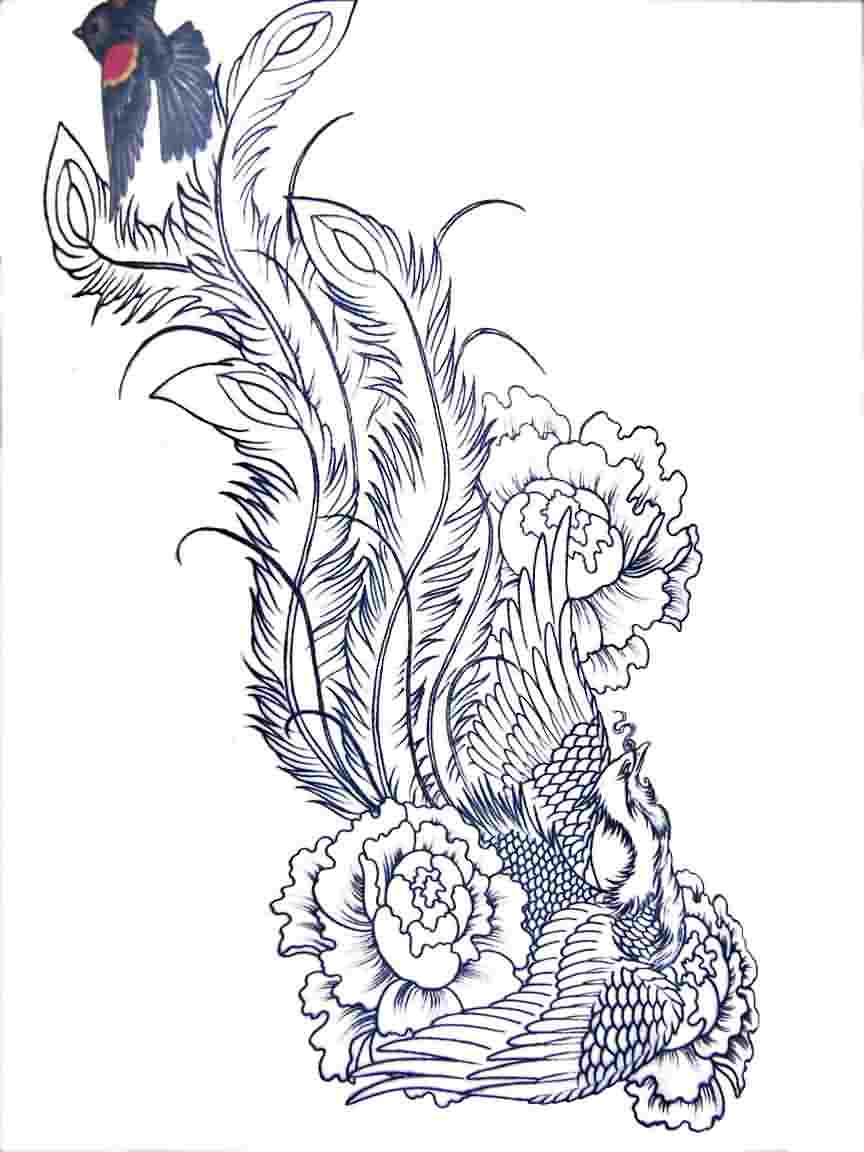Flowers And Phoenix Tattoos Sketch