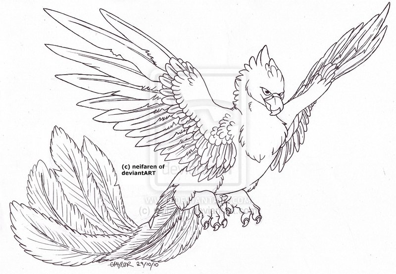 Flying Phoenix Lineart Tattoo Design