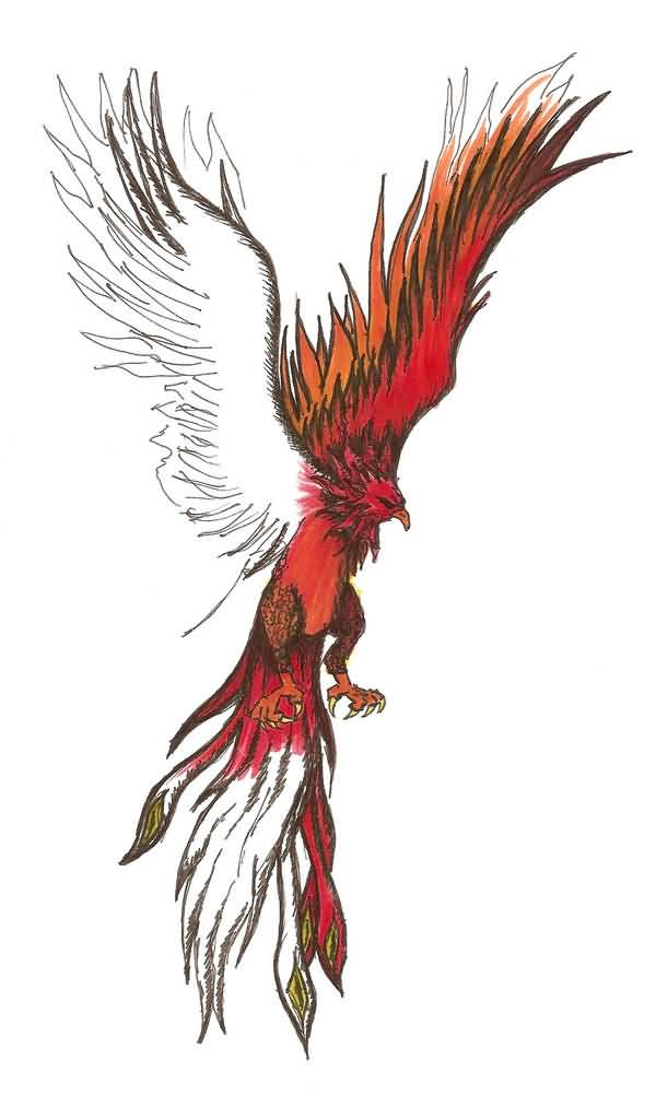 Flying Phoenix Tattoo Model