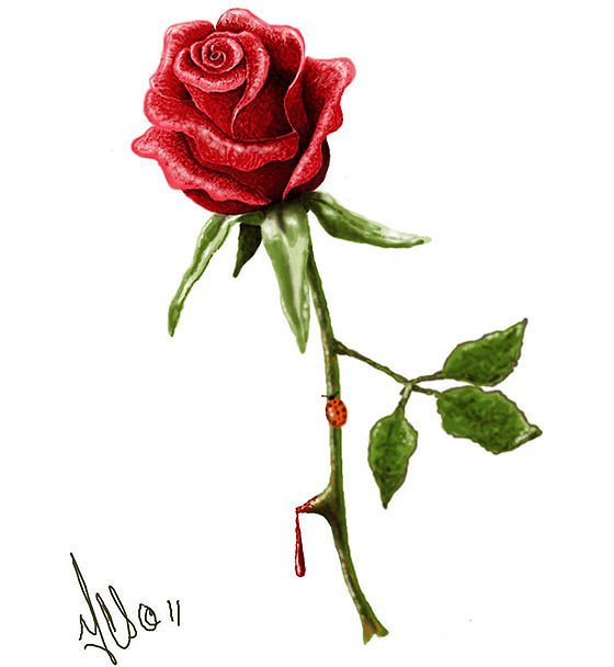 Free Bleeding Red Rose Tattoo Design