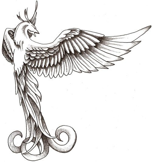 Free Grey Phoenix Tattoo Design