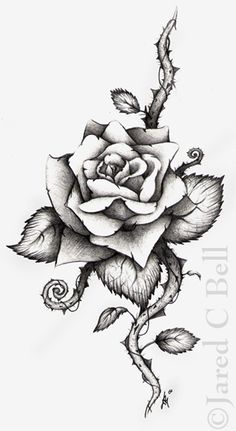 Fresh Grey Rose Flower Tattoo Design